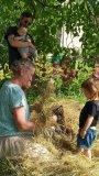 Pletení z trávy
